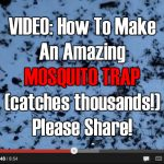 VIDEO: How To Make A Serious Mosquito Trap (catches thousands!)