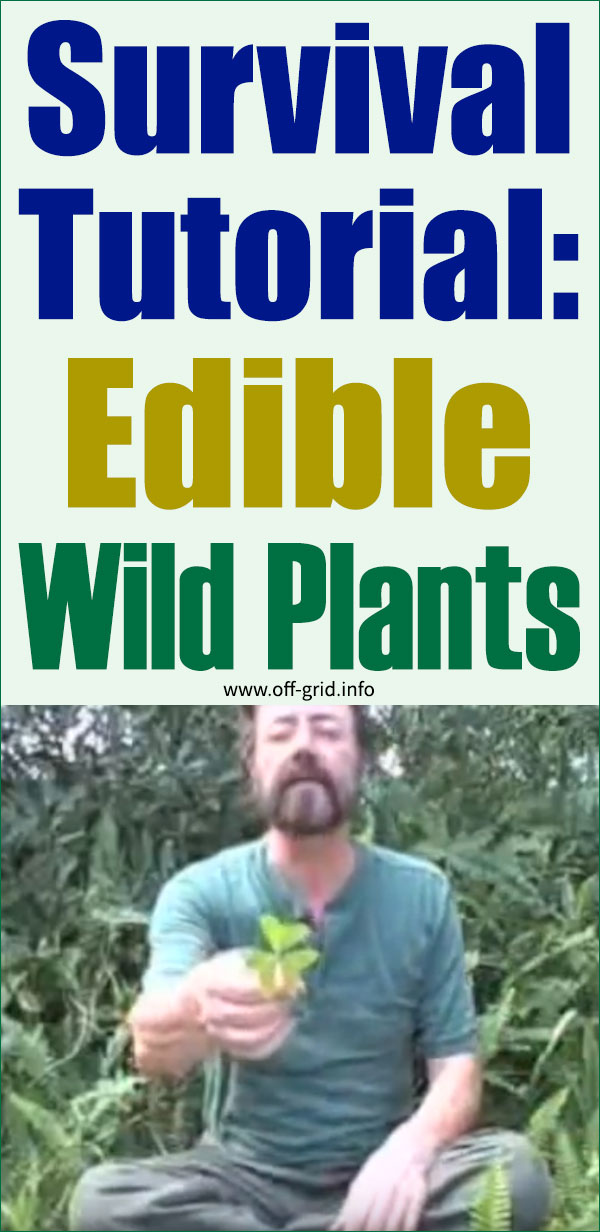 Amazing Survival Tutorial Edible Wild Plants