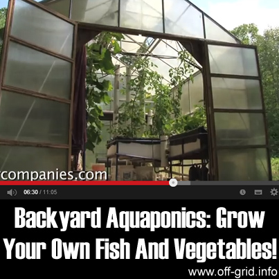 Backyard Aquaponics: Grow Your Own Fish And Vegetables