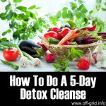 How To Do A 5-Day Detox Cleanse