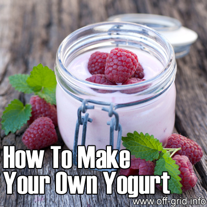 How To Make Your Own Yogurt