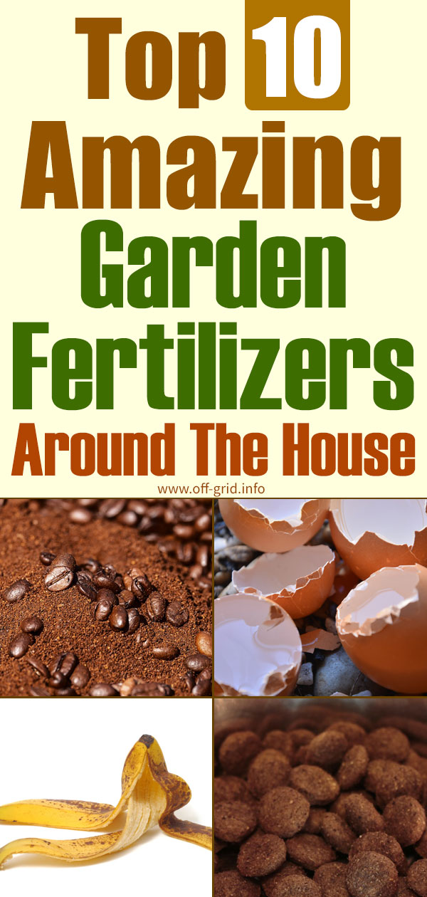 Top 10 Amazing Garden Fertilizers Around The House
