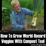 How To Grow World-Record Veggies With Compost Tea!