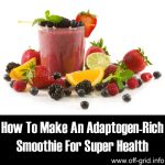 How To Make An Adaptogen-Rich Smoothie For Super Health