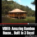 VIDEO: Amazing Bamboo House… Built In 3 Days!