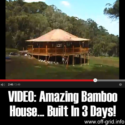 Video - Amazing Bamboo House... Built In 3 Days!
