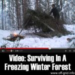 Video: Surviving In A Freezing Winter Forest