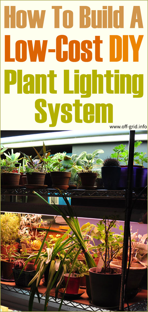 How To Build A Low-Cost DIY Plant Lighting System