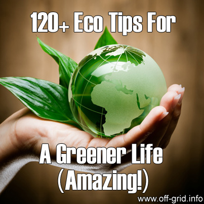 120+ Eco Tips For A Greener Life (Amazing!)