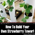 How To Build Your Own Strawberry Tower!