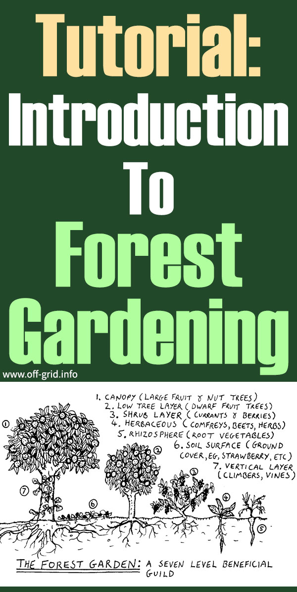 Tutorial Introduction To Forest Gardening
