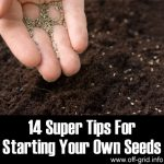 14 Super Tips For Starting Your Own Seeds