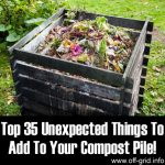 Top 35 Unexpected Things To Add To Your Compost Pile