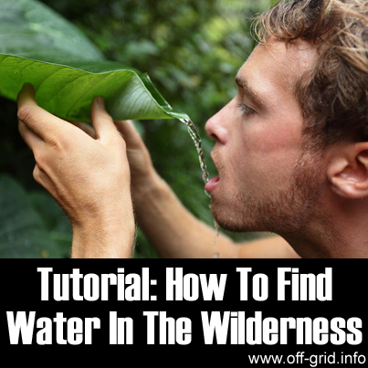 Tutorial -  How To Find Water In The Wilderness