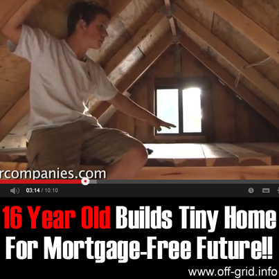 16 Year Old Builds Tiny Home For Mortgage-Free Future