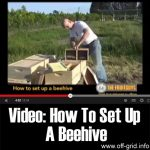 Video: How To Set Up A Beehive