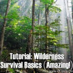 Tutorial: Wilderness Survival Basics (Amazing!)