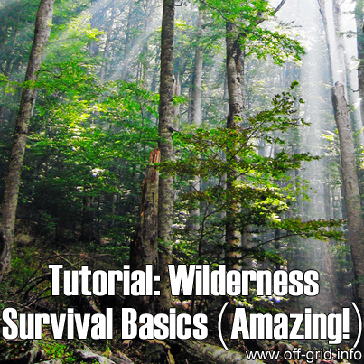 Wilderness Survival Basics (Amazing!)