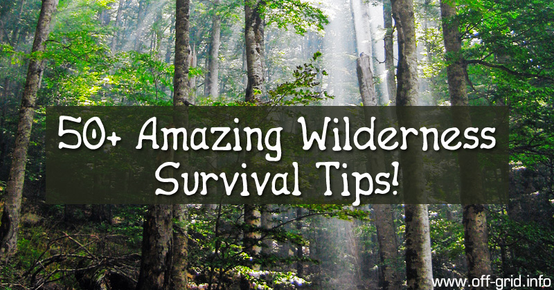 50+ Amazing Wilderness Survival Tips!