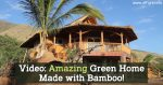 Video: Amazing Green Home Made With Bamboo!