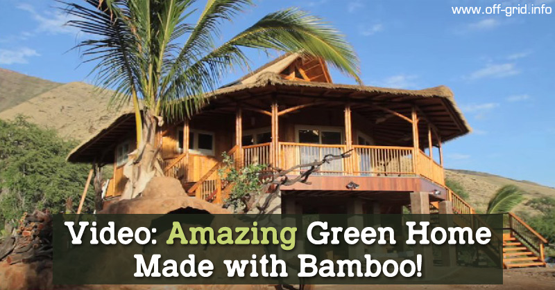 Video Amazing Green Home Made with Bamboo!