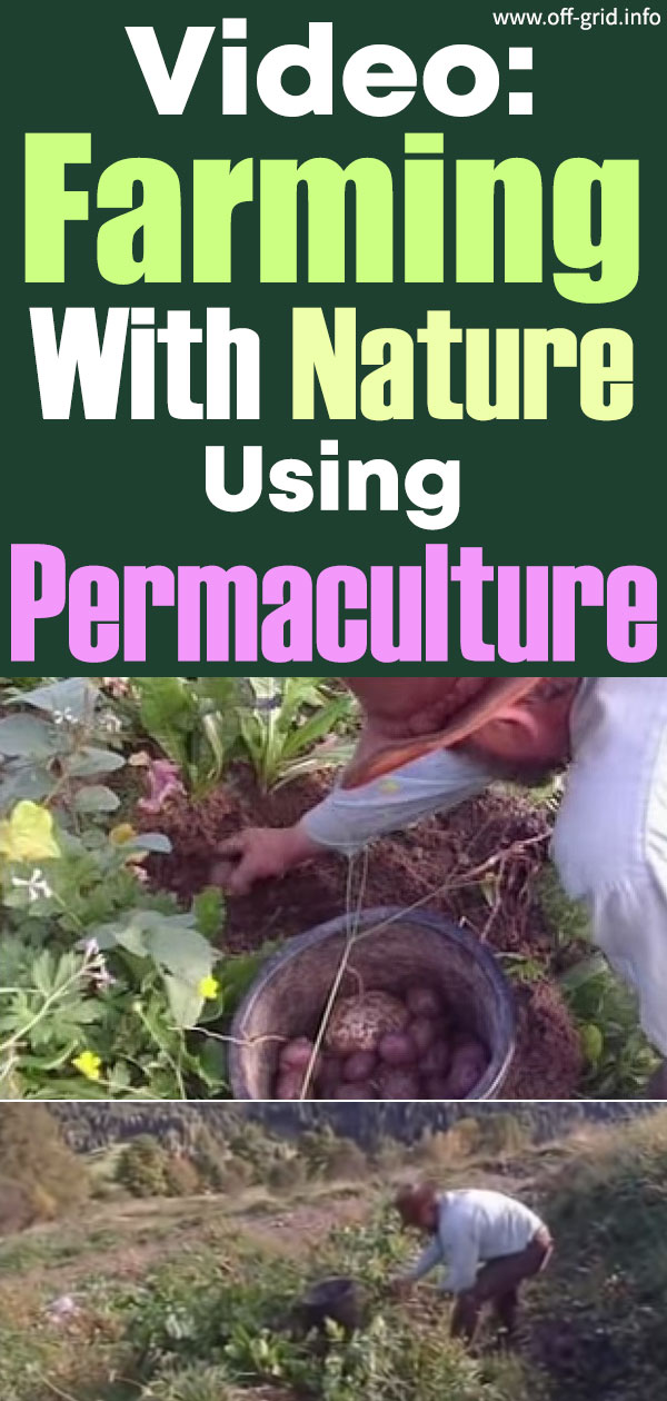 Video Farming With Nature Using Permaculture