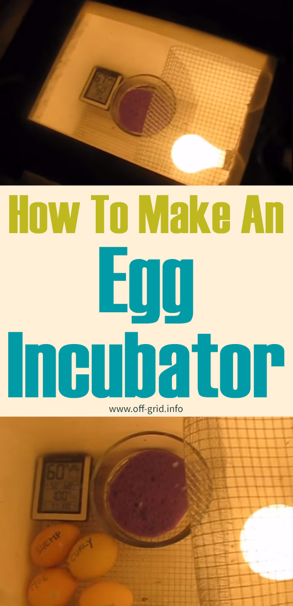 How To Make An Egg Incubator