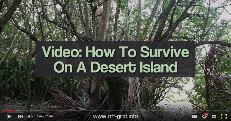 Video How To Survive On A Desert Island