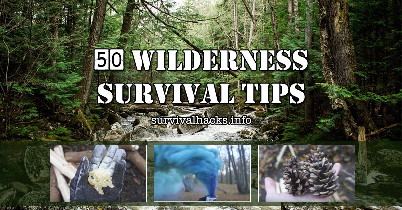 50 Top Wilderness Survival Tips