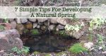 7 Simple Tips For Developing A Natural Spring