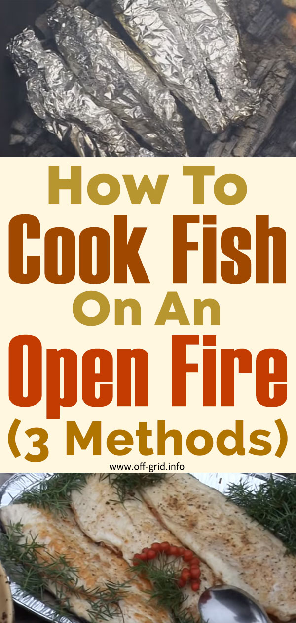 How To Cook Fish On An Open Fire – 3 Methods
