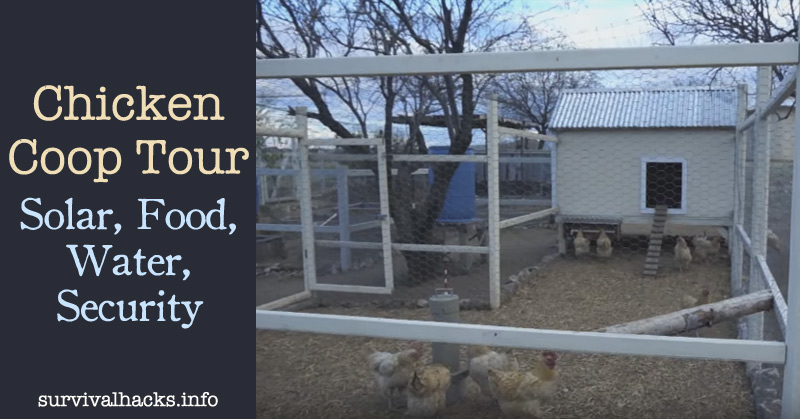 Chicken Coop Tour - Solar, Food, Water, Security