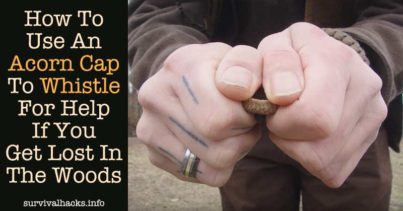 How To Use An Acorn Cap To Whistle For Help If You Get Lost In The Woods