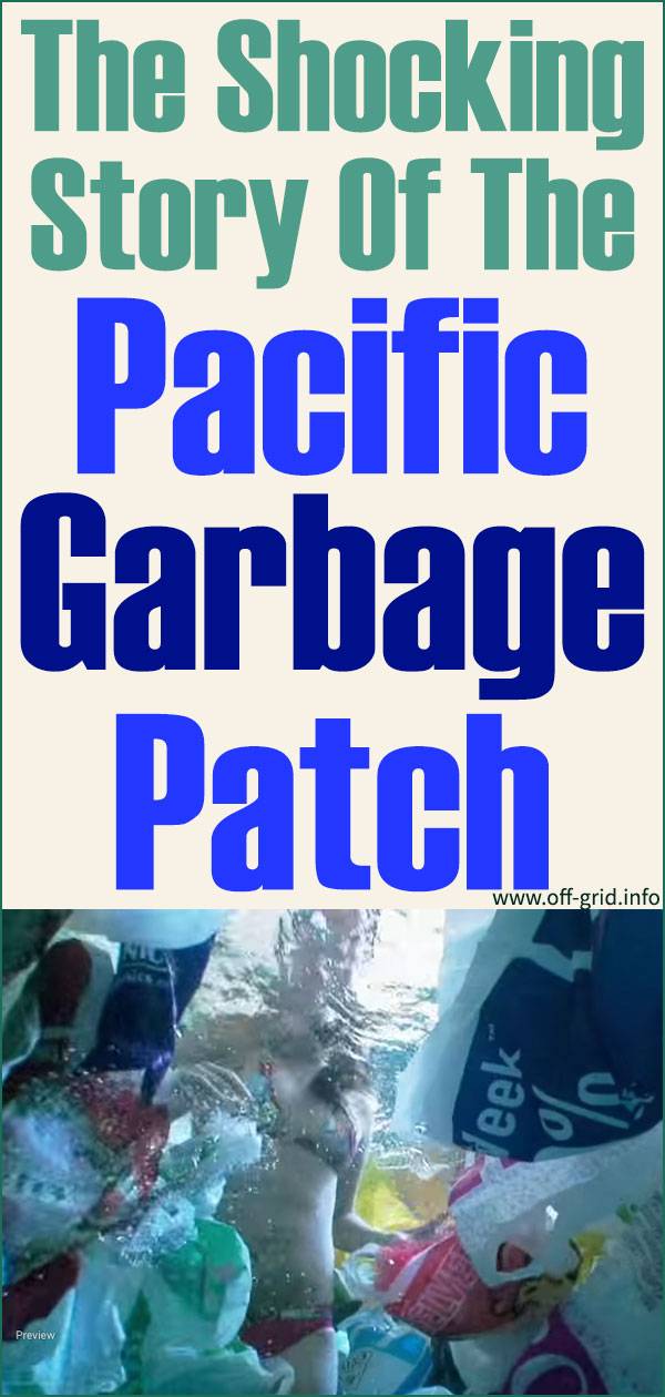 The Shocking Story Of The Pacific Garbage Patch
