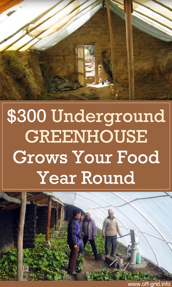 $300 Underground Greenhouse Grows Your Food Year Round