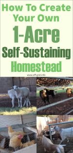 "How To Create Your Own 1-Acre Self-Sustaining ""Micro Farm"" Homestead"