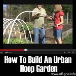 How To Build An Urban Hoop Garden