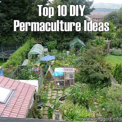 Top 10 Diy Permaculture Ideas Off Grid