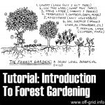 Tutorial: Introduction To Forest Gardening