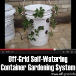 Off-Grid Self-Watering Container Gardening System