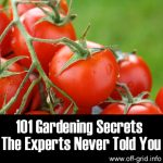 101 Gardening Secrets The Experts Never Told You