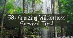 50+ Amazing Wilderness Survival Tips