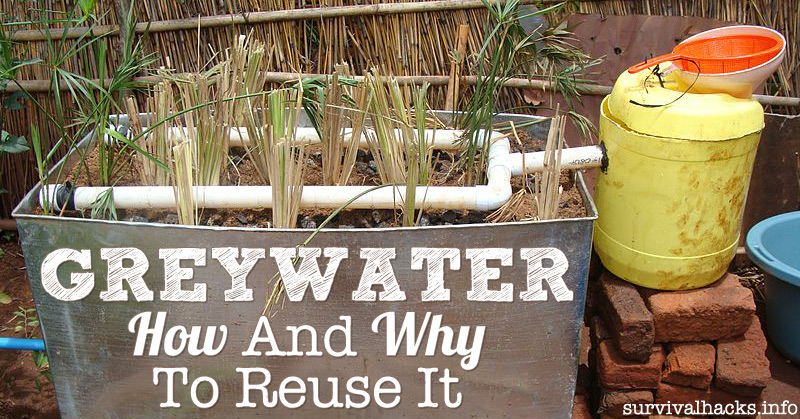 How And Why To Reuse Greywater Off Grid