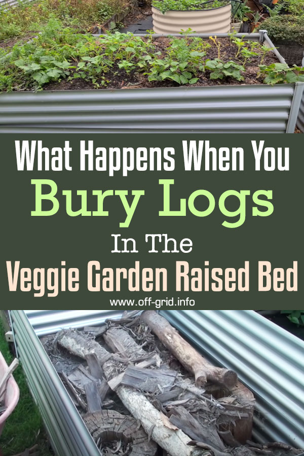 What Happens When You Bury Logs In The Veggie Garden Raised Bed